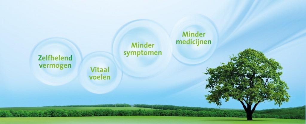 fibromyalgie symptomen lijst